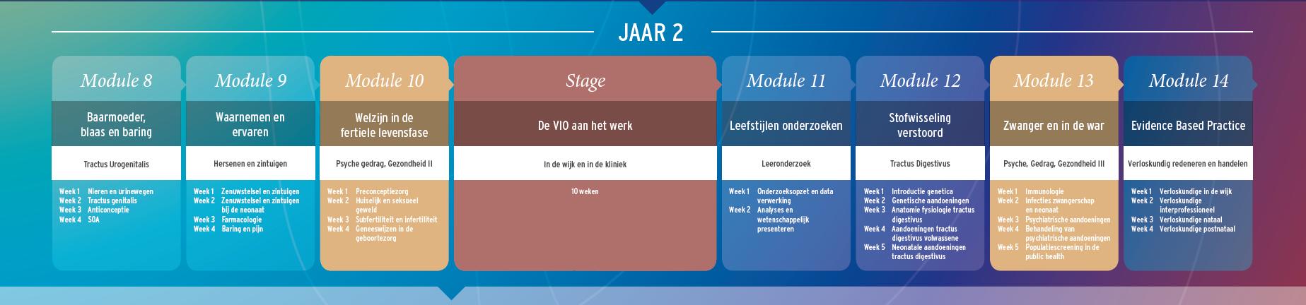 schema curriculum 2014_jaar 2
